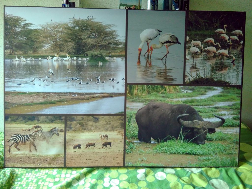 fotocollage op canvas