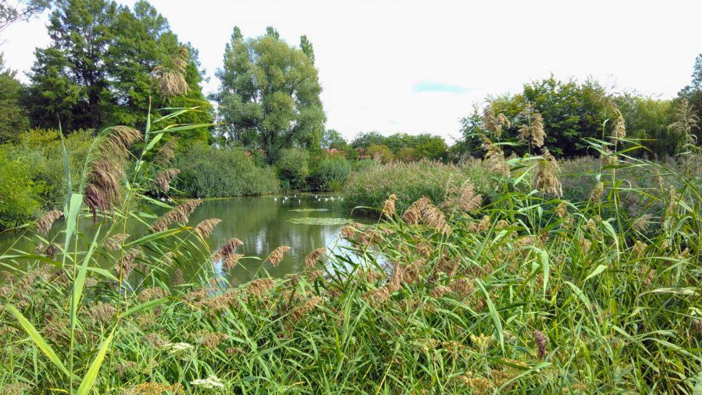 Brabantpark, Breda