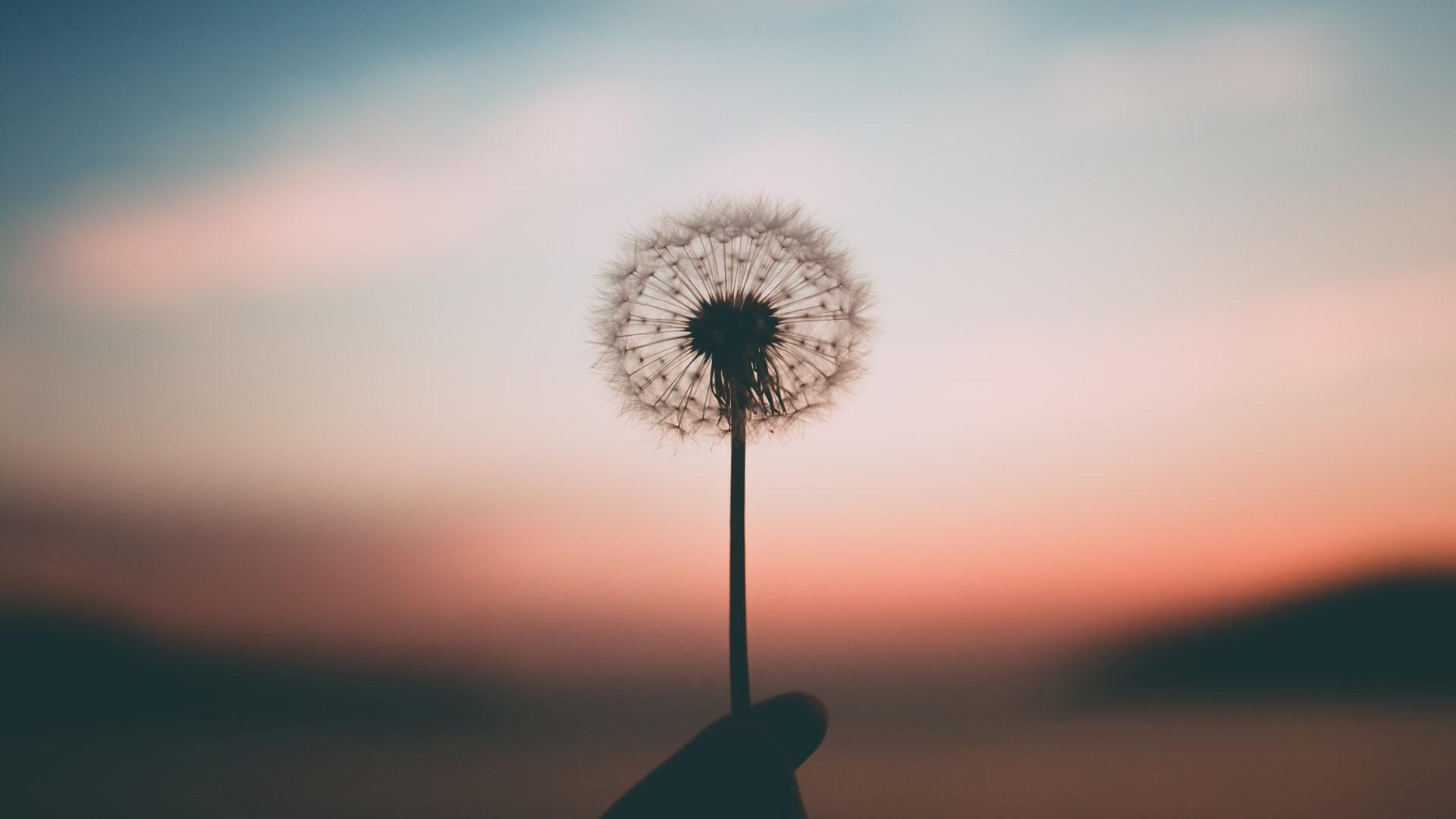 Wendy Wordt Wijzer – mediteren en sorteren